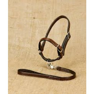Leather Sheep Halter with Lead