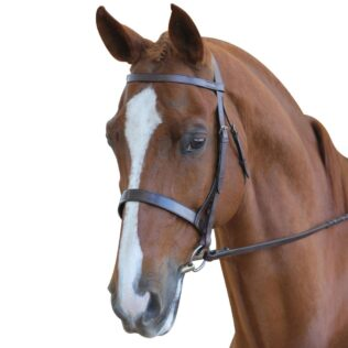 Leather bridle with nose band and Reins