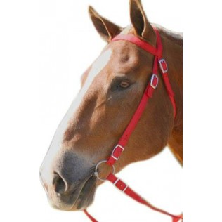 Nylon Horse Bridle with Reins