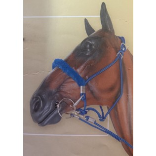 Rope halter bridle with Reins