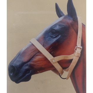 Single Leather Head Collar